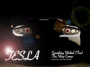 CocoEco-Tesla